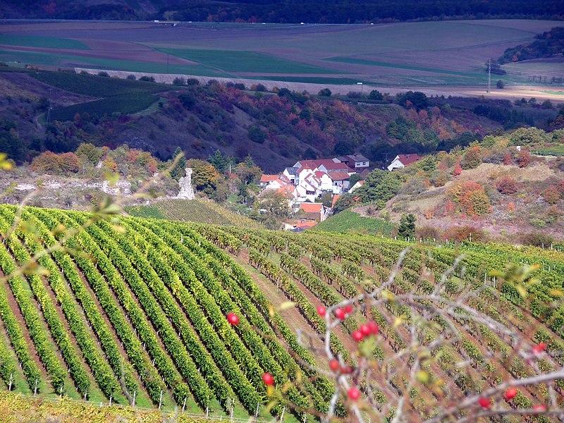 File:Schlossböckelheim mit Burgruine - 2009-10-15 - panoramio.jpg