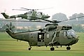 Sea King & Lynx - Middle Wallop (2548778562).jpg