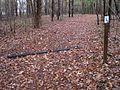 Shelby Farms Park Memphis TN 2013-11-17 028.jpg