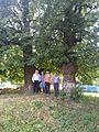 Shevchenko Ways in Podolia Wikiexpedition 58.jpg