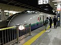 Shinkan 200-kei at Tokyo station.jpg