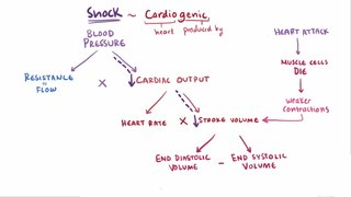 Shock (circulatory) Grave, near to total failure of the circulatory system.