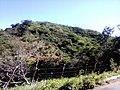 Sitio São João - panoramio (1).jpg
