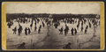 Skating scene in Central Park, winter 1866, by E. & H.T. Anthony (Firm) 2.png