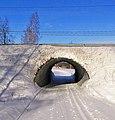 Ski track underpass.jpg