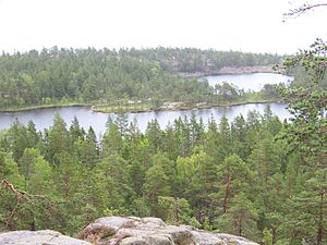Skuleskogen National Park - view from hill.jpg