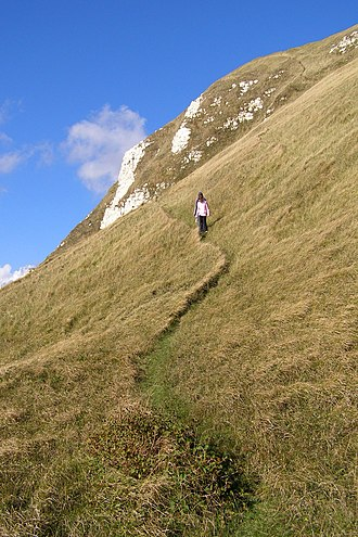 White Nothe - Image: Smugglers path white nothe dorset