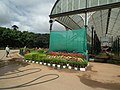 Snap from Lalbagh Flower Show Aug 2013 7858.JPG