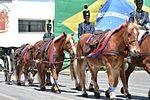 Solenidade em comemoração aos 56 anos da criação do 32⁰ Grupo de Artilharia de Campanha (GAC) do Exército Brasileiro – Grupo D.Pedro I (26364429171).jpg