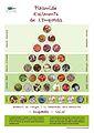 Solució Piràmide d'aliments de l'Empordà DINA3.jpg