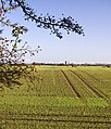 South of Lelley - geograph.org.uk - 1572411.jpg