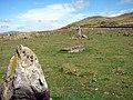 Standing Stones - geograph.org.uk - 216596.jpg