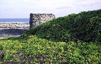Starbuck Island - Image: Starbuck AKK Wall