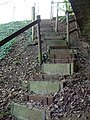 Steps into the Nature reserve - geograph.org.uk - 331611.jpg