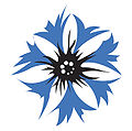 Steuben-Parade-Cornflower-logo.jpg