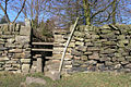 Stile near Greens House - geograph.org.uk - 693773.jpg