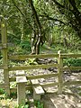 Stile near Lower Rows - geograph.org.uk - 801018.jpg