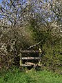 Stile on the footpath to Whiteway Farm - geograph.org.uk - 769233.jpg