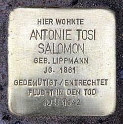 Photo of Antonie Tosi Salomon brass plaque