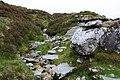 Stream on Mangerton Mountain - geograph.org.uk - 448624.jpg