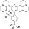 Sulforhodamine 101 structure.png