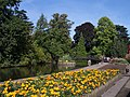 Swan Pool, Priory Park, Malvern - geograph.org.uk - 56946.jpg