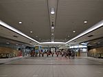 Sydney Domestic Airport Station12.jpg