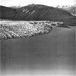 Taku Glacier, terminus of tidewater glacier, September 1, 1977 (GLACIERS 6253).jpg
