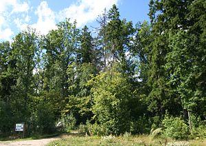 Vantaa: Tammisto la3