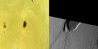 Tawhaki Patera patera on Io