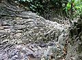 Teck Guan Cocoa Village Columnar Basalt.jpg