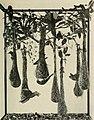 The American Museum journal (c1900-(1918)) (18156116082).jpg