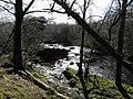 The Ballinderry river at Wellbrook Beetling Mill,Cookstown - geograph.org.uk - 1823640.jpg
