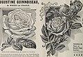 The Champion City Greenhouses (1900) (20531155896).jpg