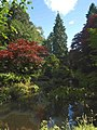 The Japanese garden at Slaley Hall Hotel - geograph.org.uk - 1409238.jpg