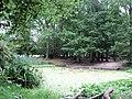 The Pond near the Monument, Ashridge, in late September - geograph.org.uk - 1583337.jpg