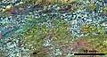 Thin section scan crossed polarizers Siilinjärvi H2.jpg