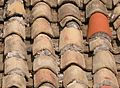 Tiles,rural roof,TamilNadu-218.jpg