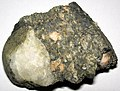 Tillite (Konnarock Formation, Neoproterozoic, 650-700 Ma (?); Fox Creek roadcut, Grayson County, Virginia, USA) 1 (25807324030).jpg