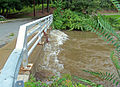 Tin Brook after Hurricane Irene at Highland Avenue bridge, Walden, NY.jpg