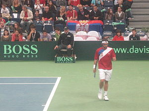 Janko Tipsarević - 2010 Davis Cup : Tipsarević during his match against the Czech Republic