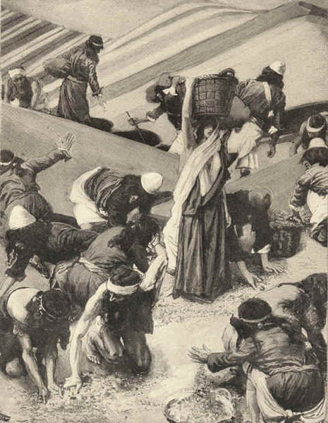 File:Tissot The Gathering of the Manna.jpg
