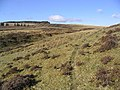 Todshaw Hill - geograph.org.uk - 340876.jpg