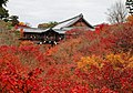 Tofuku-ji (4587863480).jpg