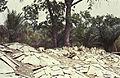 Togo-benin 1985-009 hg.jpg