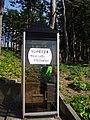 Tojinbo Telephone Box.jpg