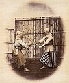 Tokugawa Kendo.jpg