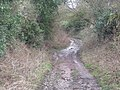 Too muddy to walk along today - geograph.org.uk - 658694.jpg