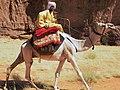 Toubou camel rider in northeastern Chad 2015.jpg