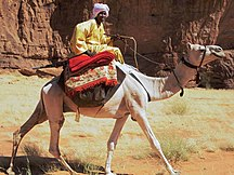Chad-Ethnic groups-Toubou camel rider in northeastern Chad 2015